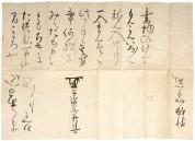 A119(徳川家光書状)